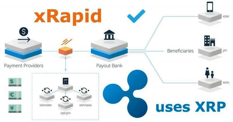 Ripple-xRapid-platform