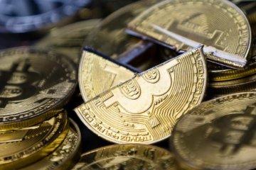 chutte-bitcoin-ripple